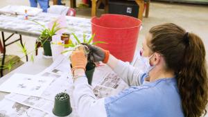 Gadsden Horticulture Program Still